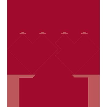 logo_staempfli_2